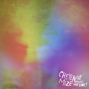 mize-cheyenne-among-the-grey