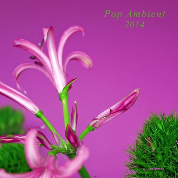 Pop Ambient 2014 Compilation
