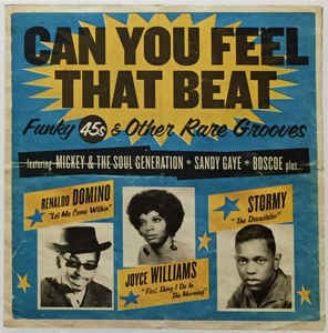can-you-feel-that-beat-funk-45s-and-other-rare-grooves
