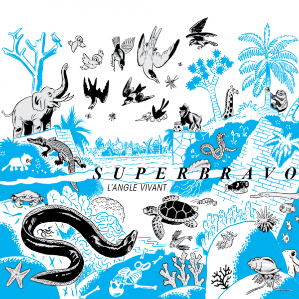 superbravo album